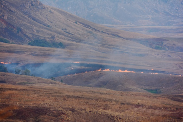 10.7  Important modifiers of the landscape, fires are common during the dry season.  The fires provide green grass for the cattle in the wet season.  These fires are the main factor in preventing the regrowth of trees in many parts of Madagascar.