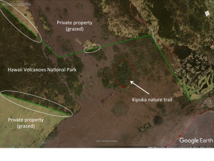 Difference between grazed private land and the Hawaii Volcanoes National Park that is not grazed. Ovals indicate most obvious boundaries (fence divides the properties) The kipuka nature trail in the national park is shown.