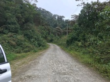 The slow road between Bellavista Cloud Forest Lodge and Mindo. Great for birding. Only a few cars an hour.