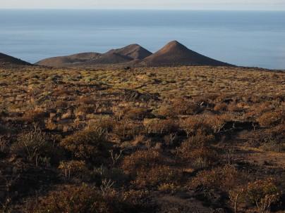 Dry El Hierro landscape.